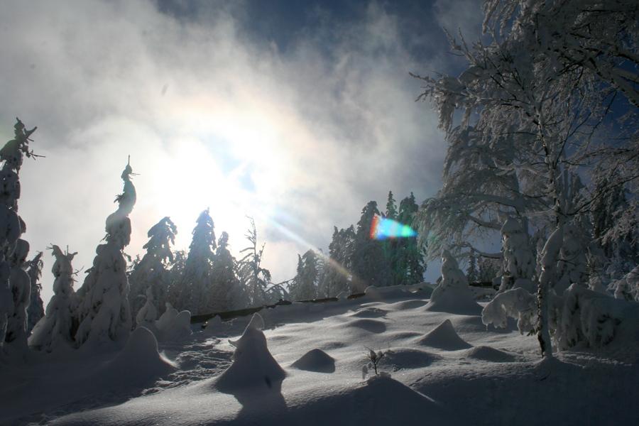 trijekralji_zima_12