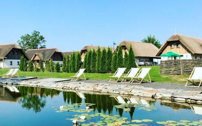 Experience Pannonian world – FINALIST#5